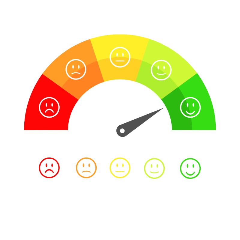 customer satisfaction survey 2